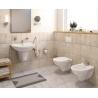 Комплект ROCA NEO Rimless тоалетна чиния и капак, структура и бутон Eco Solution